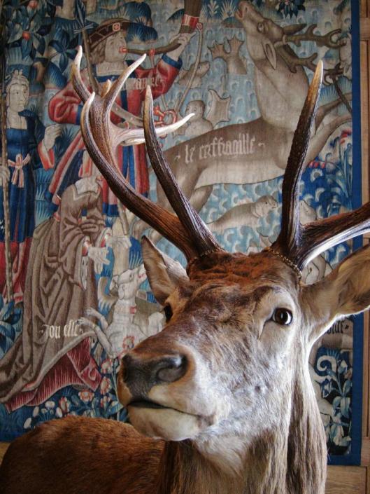 Cerf (Deer)