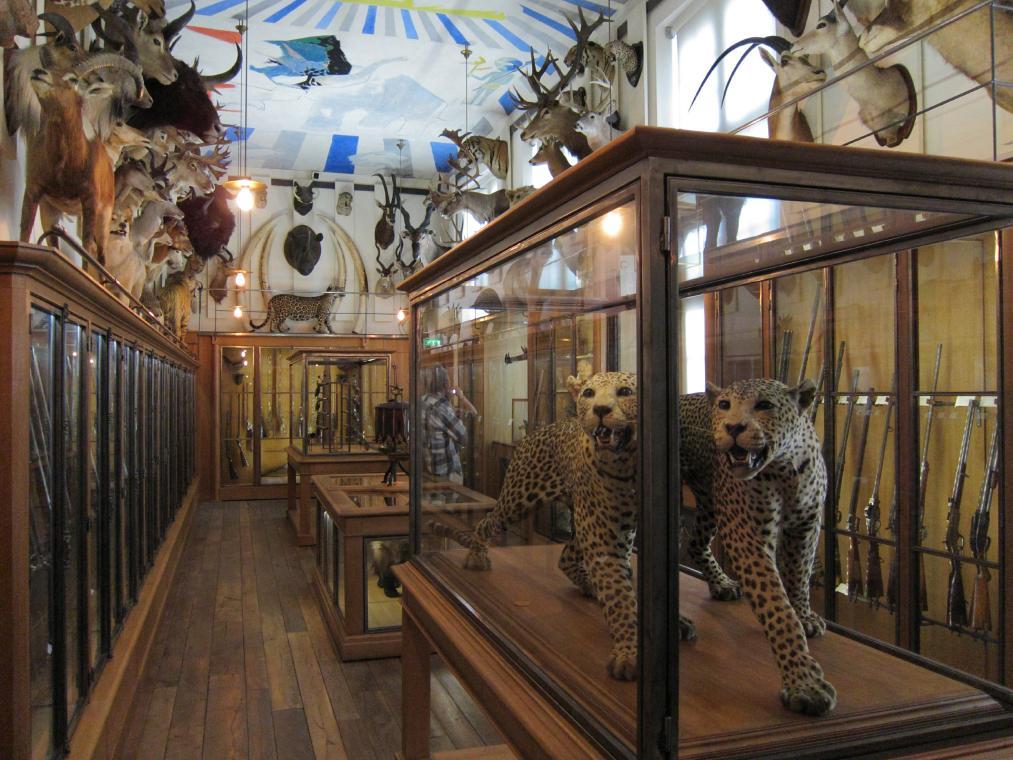 [inspi] Expositions / Musées / Salons... Trophy-room-med