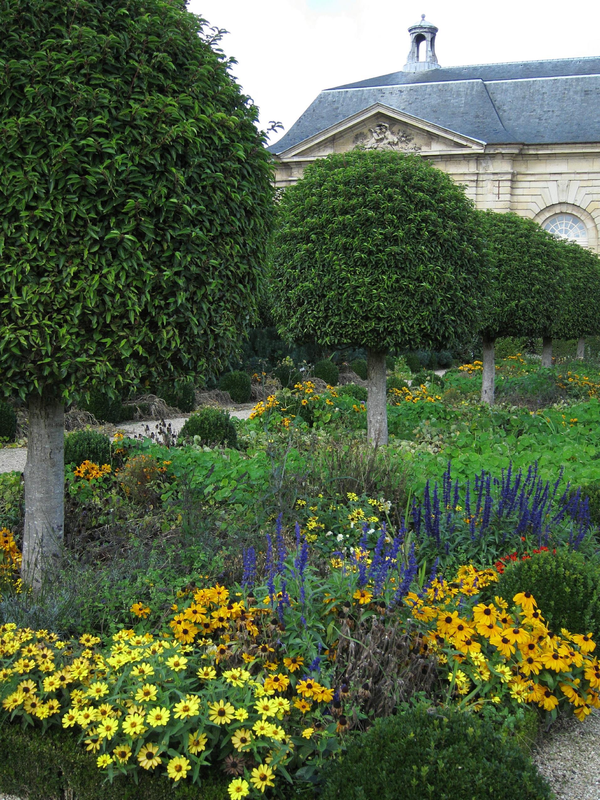 Fall Flowers, Parc de Sceaux