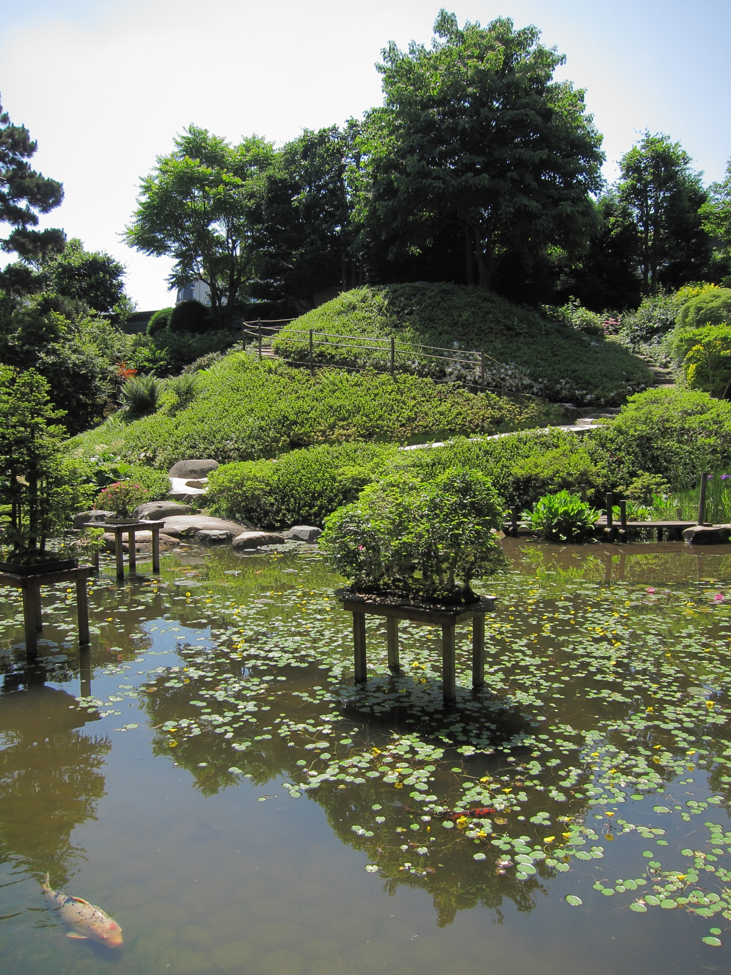 The Albert Kahn Japanese Garden in Boulogne, near Paris.