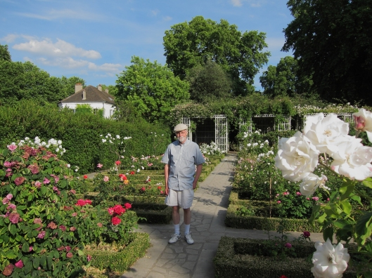 Bob in the rose garden of the Parc de Bercy (wearing Yunpeng's stylish hat).