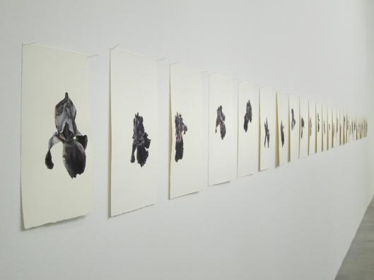 Patrick Neu paints one iris every spring, at Palais de Tokyo.