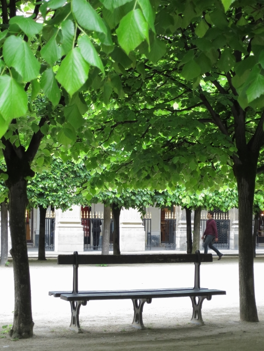 Greenery in the garden of the Palais Royal