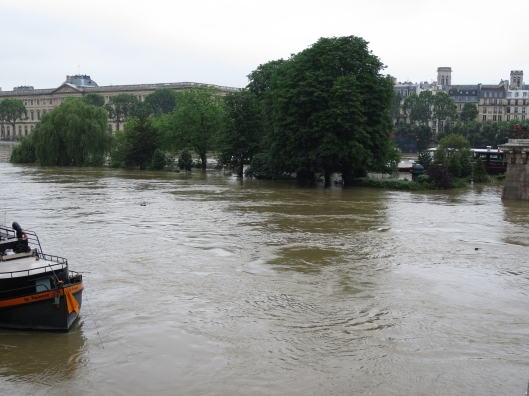 The Square du Vert-Galant at the point of the l'île de la Cité, during the Great Flood of 2016