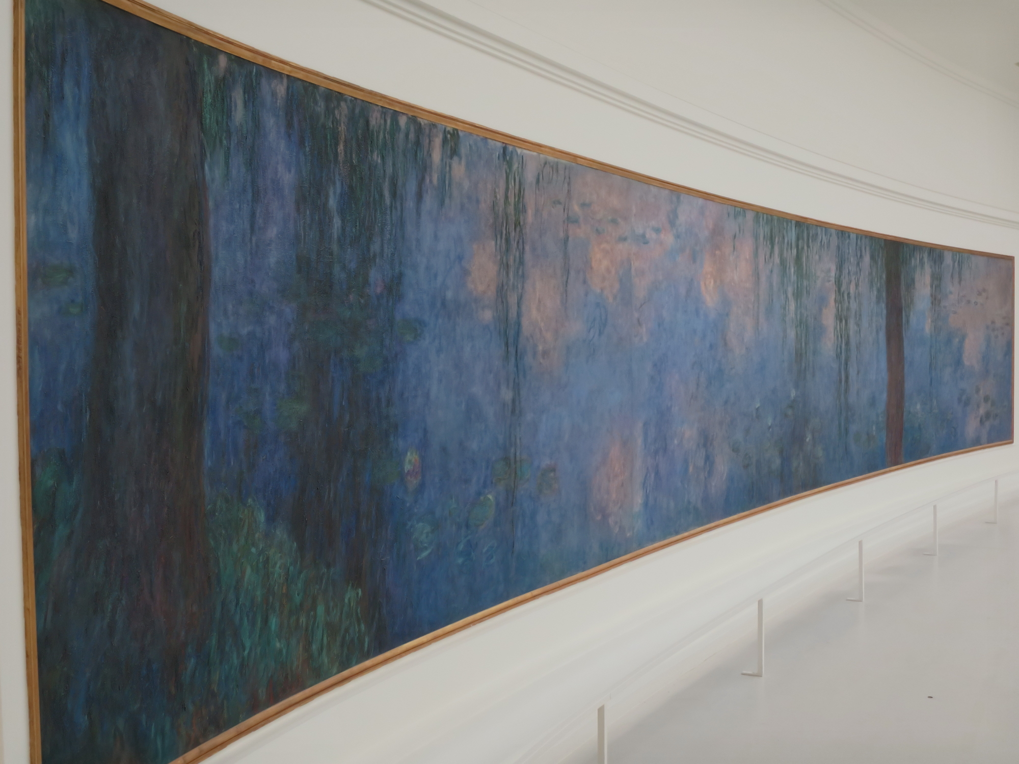 Monet, Les Nymphéas (water lillies) at l'Orangerie museum